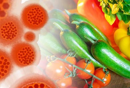 Cosa mangiare per rinforzare il sistema immunitario